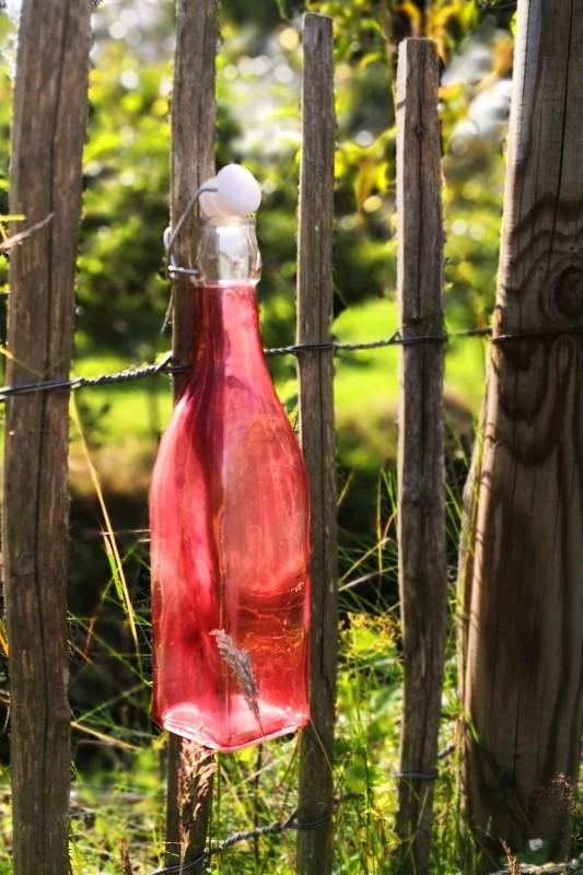media/image/Flasche-Gartenzaun.jpg
