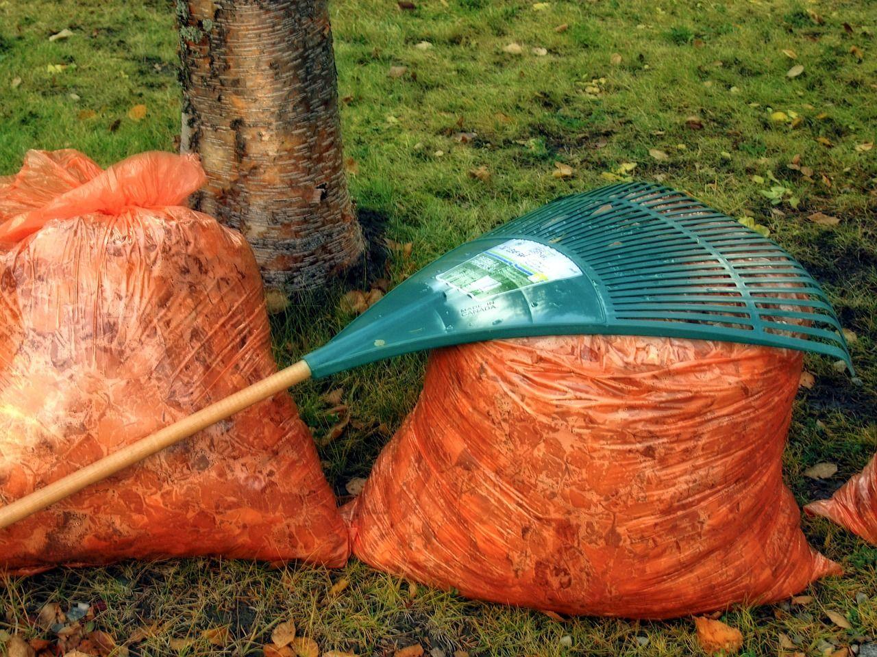 Laub Abfallsäcke