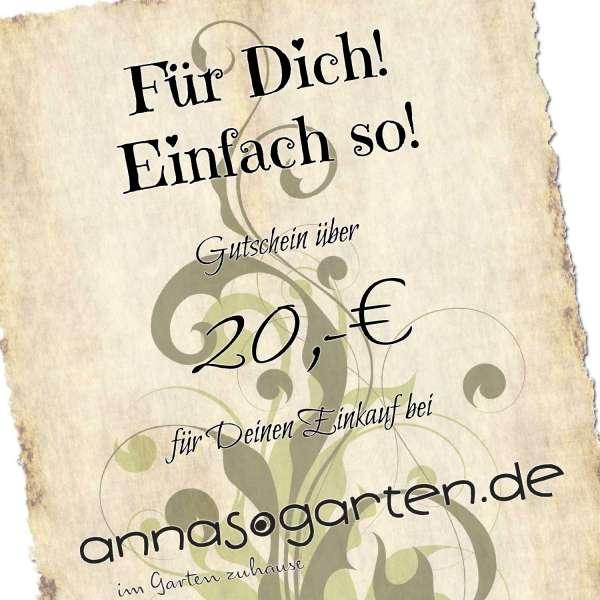 Gutschein Einfach so 20 Euro