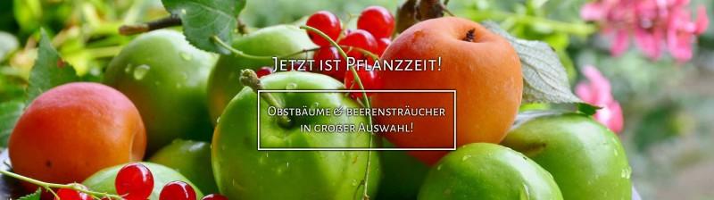https://www.annas-garten.de/obst/