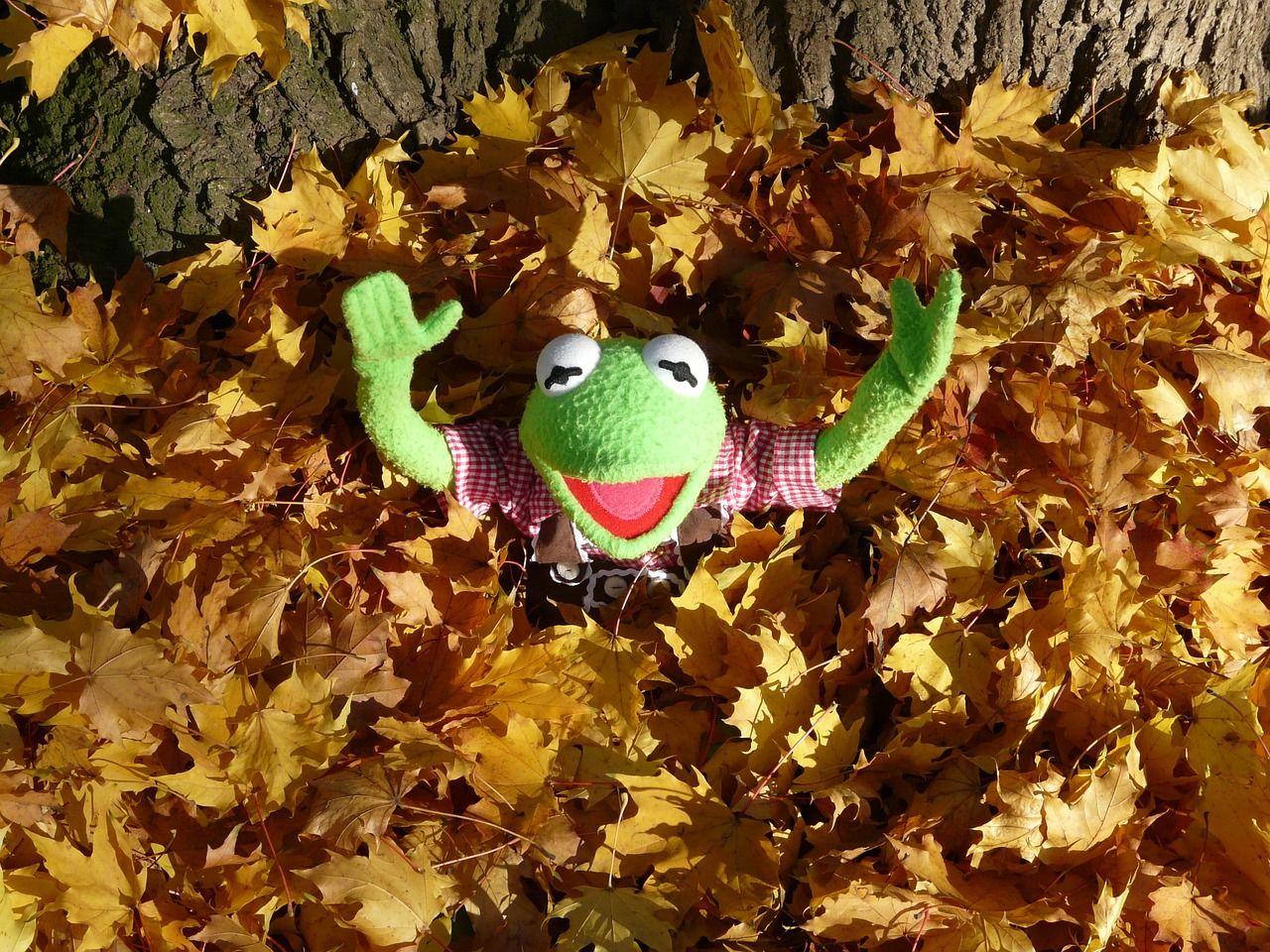 Laub Kermit